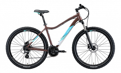 Edelweiss 2.0 HD 27 (Matt Bronze/Light Blue)